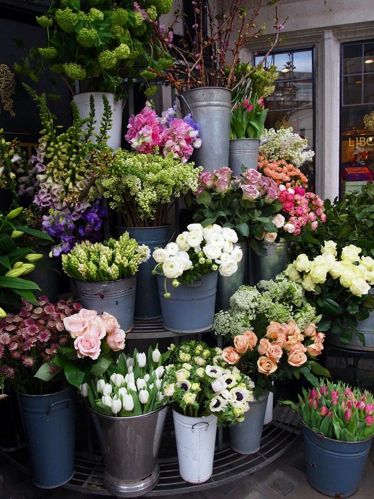 Check Out The Beautiful Flowers At Liberty Wait Until Sunday Go And Get Them 1 4 Of The Price From Columbia Road D Planting Flowers Plants Beautiful Flowers