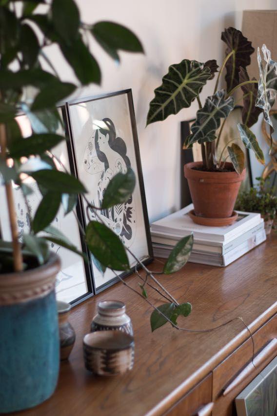 Peeping through by Jeska Hearne Wohnen Pinterest Interiors