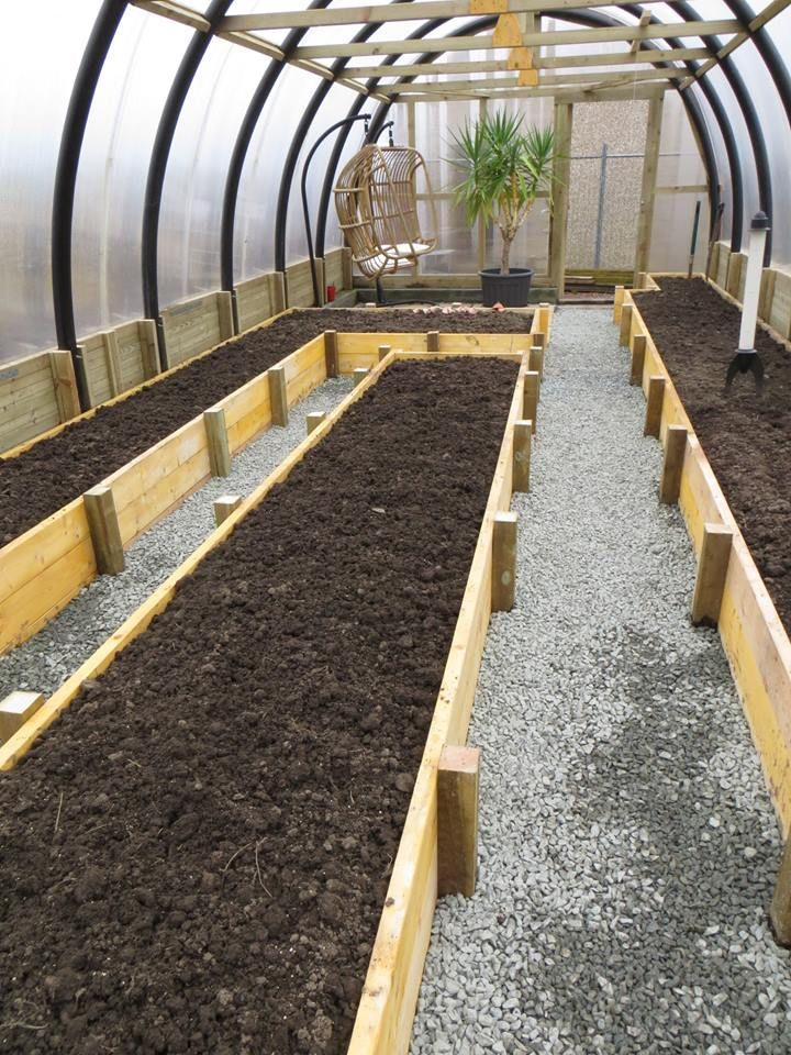 growing in winter in raised beds in greenhouse - Google Search