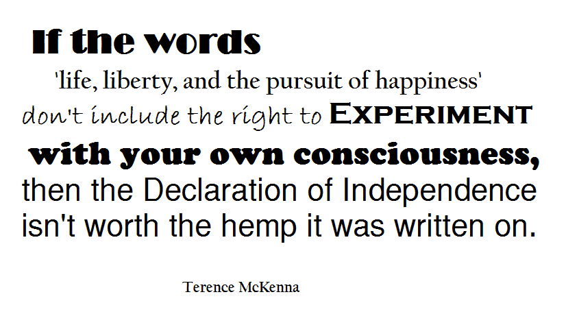 Life Liberty And The Pursuit Of Happiness Quote Pleasing Terrence Mckenna Quote Life Liberty And The Pursuit Of Happiness