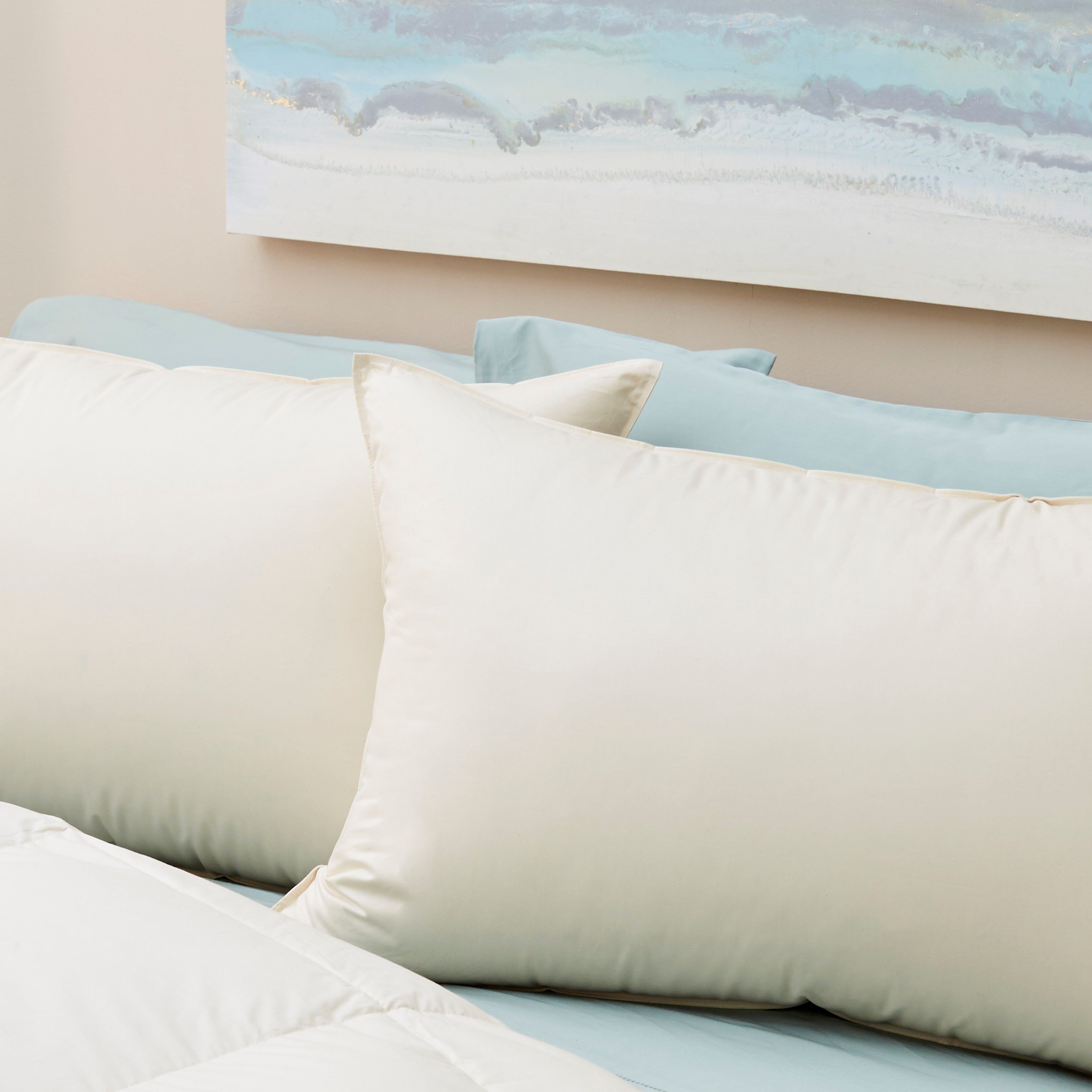 Down Organic Cotton Pillows