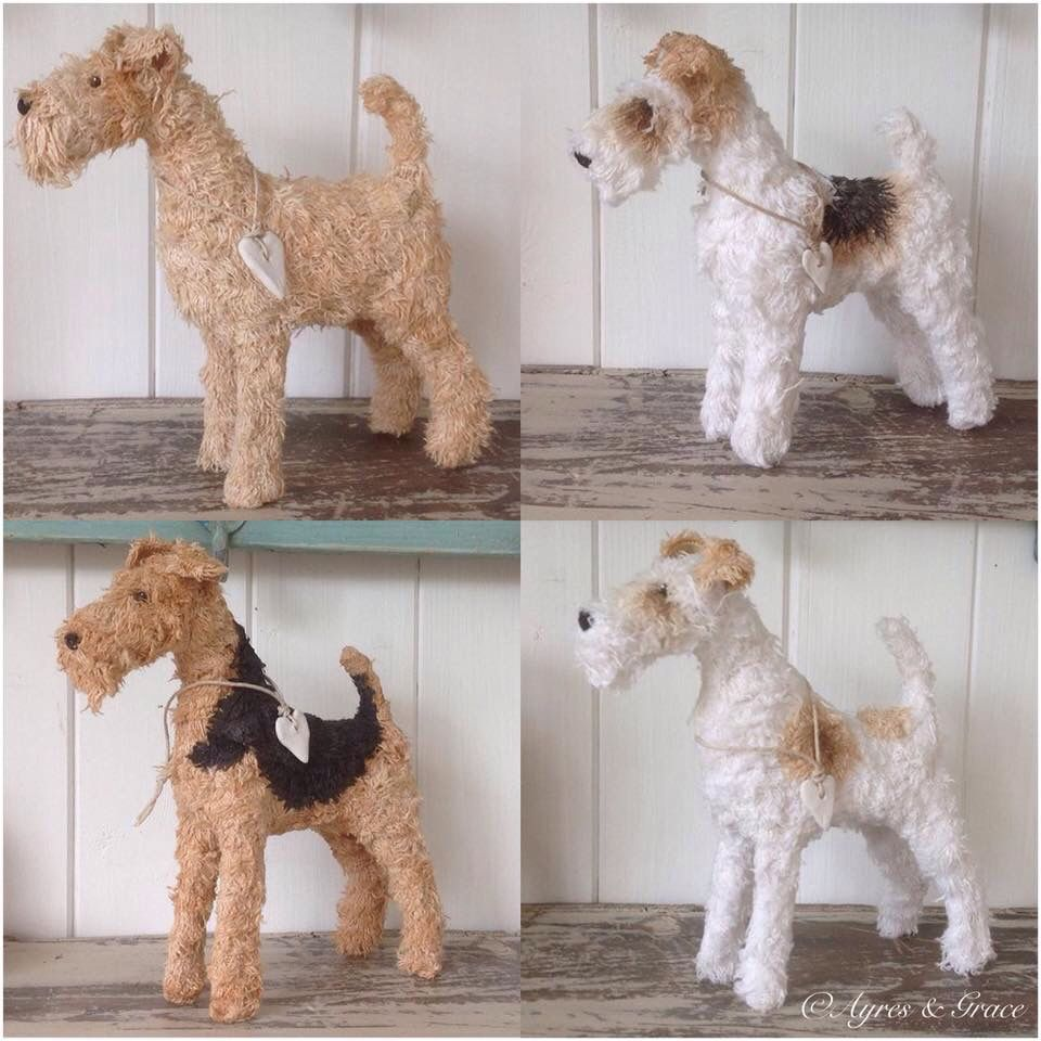 WFTS.... Fox terrier, Wire fox terrier, Lakeland terrier