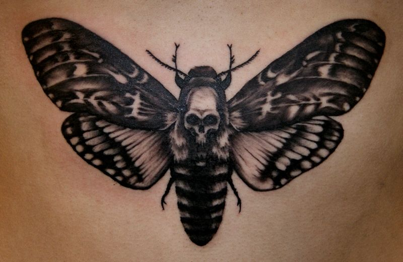 Deaths Head Hawk Moth Moth Tattoo Death Head Moth Tattoo Death Moth Tattoo