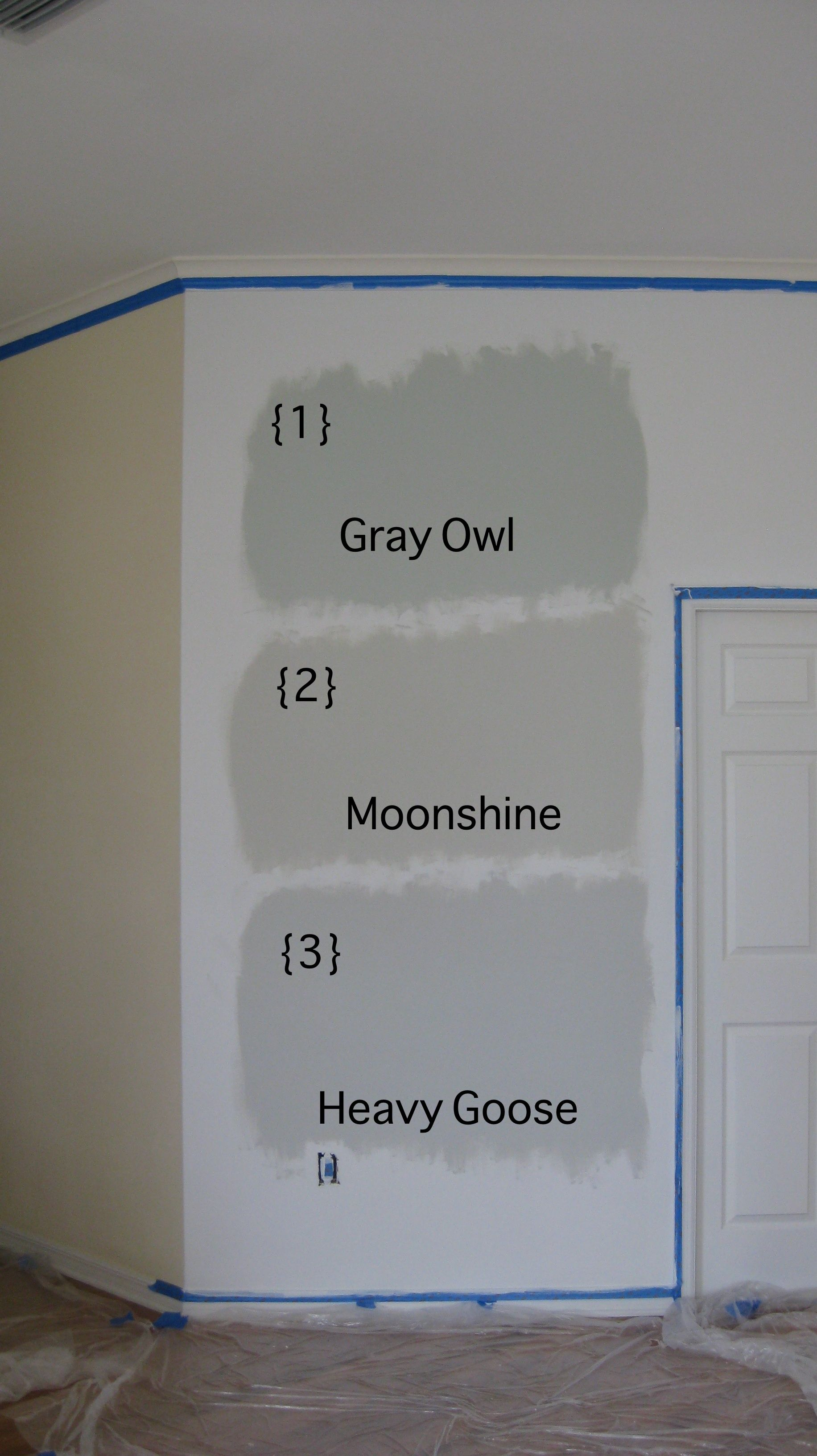 Beautiful Gray Owl Benjamin Moore For Your Interior Paint Color Idea: Example My…