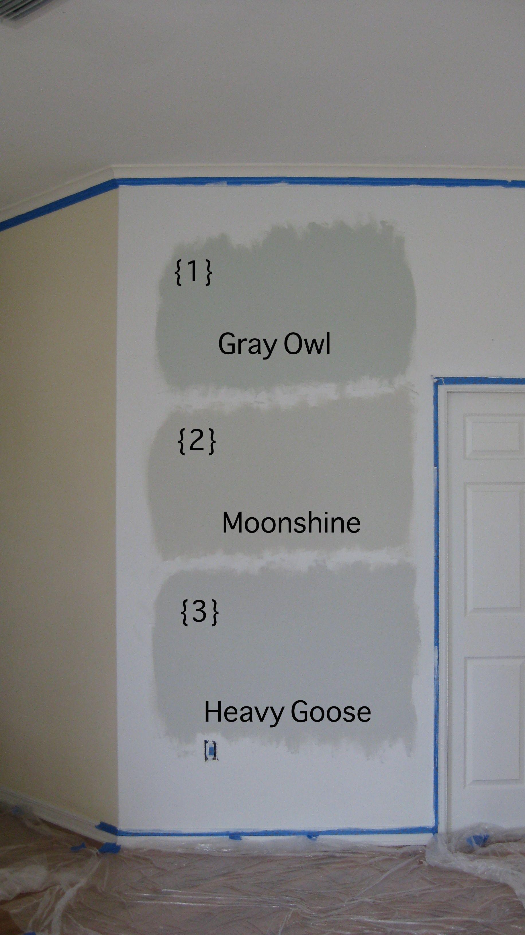 benjamin moore moonshine vs gray owl bedroom paint colors paint colors for home interior. Black Bedroom Furniture Sets. Home Design Ideas