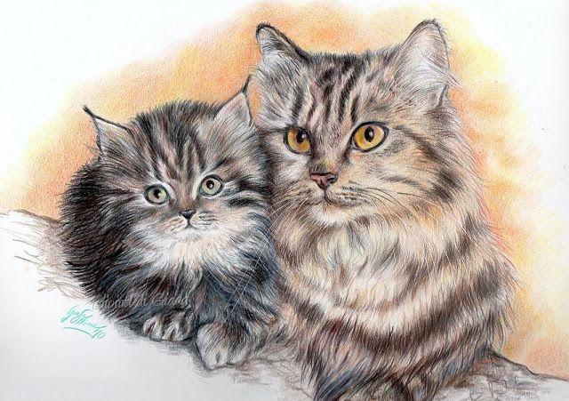 Disegni Bellissimi Di Cani E Gatti Dipinti Di Giada Gatta Con Gattino Disegno A Matite Colorate Disegni Di Cane Illustrazione Animali Gatti