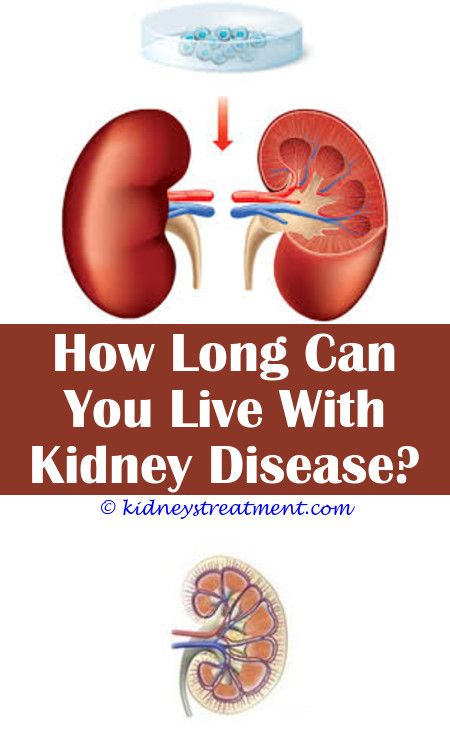 Pin On What Is Kidney Disease