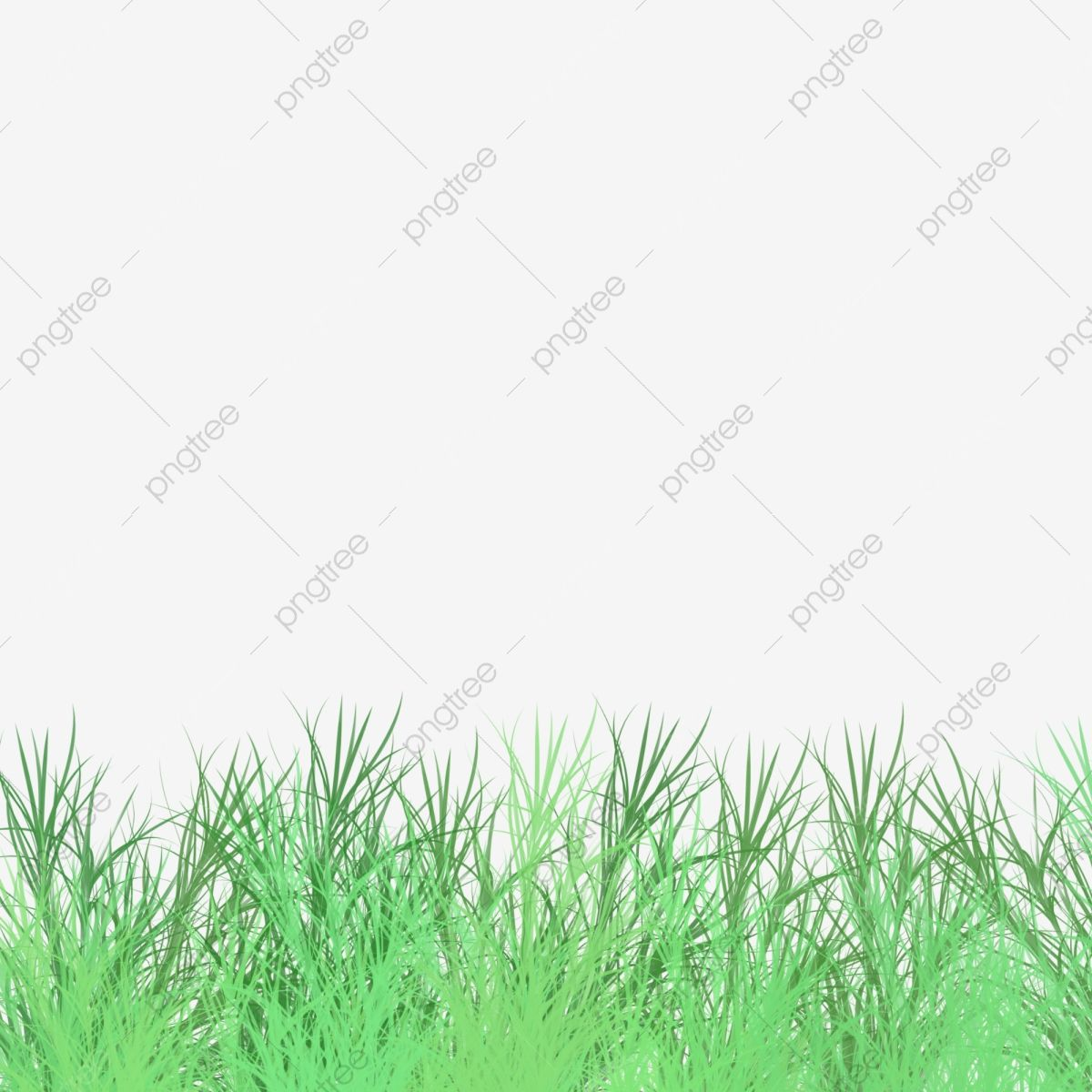 Decorative Green Space Fresh Green Grass Grassland Grass Green Grass Cartoon Green Grass Png Transparent Clipart Image And Psd File For Free Download Green Grass Background Green Grass Green Space