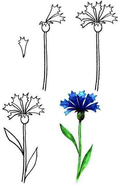 Blumen Malen Lernen Tutorial Blumen Malen Blumenzeichnung