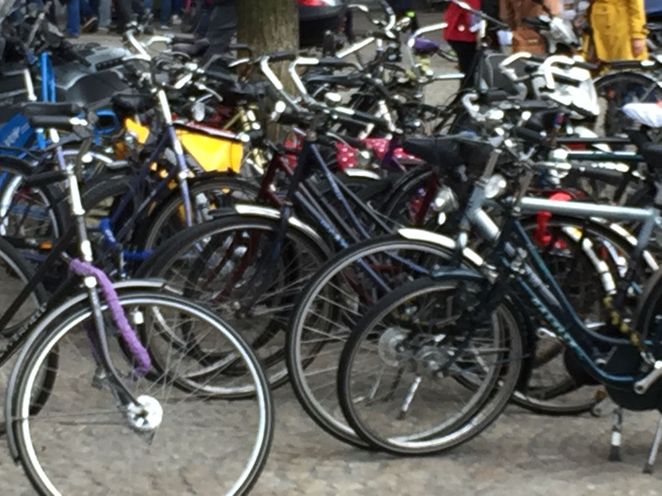 #bicicletas #bicycle