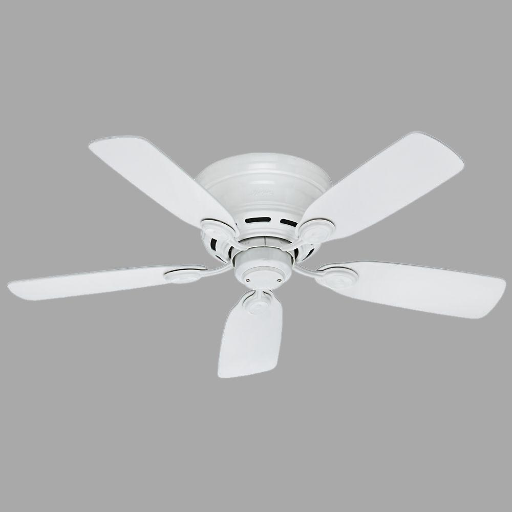 Hunter Low Profile 42 In Indoor Snow White Ceiling Fan 51059 The Home Depot White Ceiling Fan Ceiling Fan Hunter Ceiling Fans