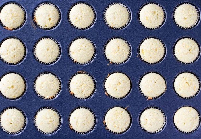 Mini Lemon Cupcakes with Lemon Buttercream Icing - Delicious Little Bites #lemonbuttercream Mini Lemon Cupcakes with Lemon Buttercream Icing - Delicious Little Bites #lemonbuttercream Mini Lemon Cupcakes with Lemon Buttercream Icing - Delicious Little Bites #lemonbuttercream Mini Lemon Cupcakes with Lemon Buttercream Icing - Delicious Little Bites #lemonbuttercream Mini Lemon Cupcakes with Lemon Buttercream Icing - Delicious Little Bites #lemonbuttercream Mini Lemon Cupcakes with Lemon Buttercre #lemonbuttercream