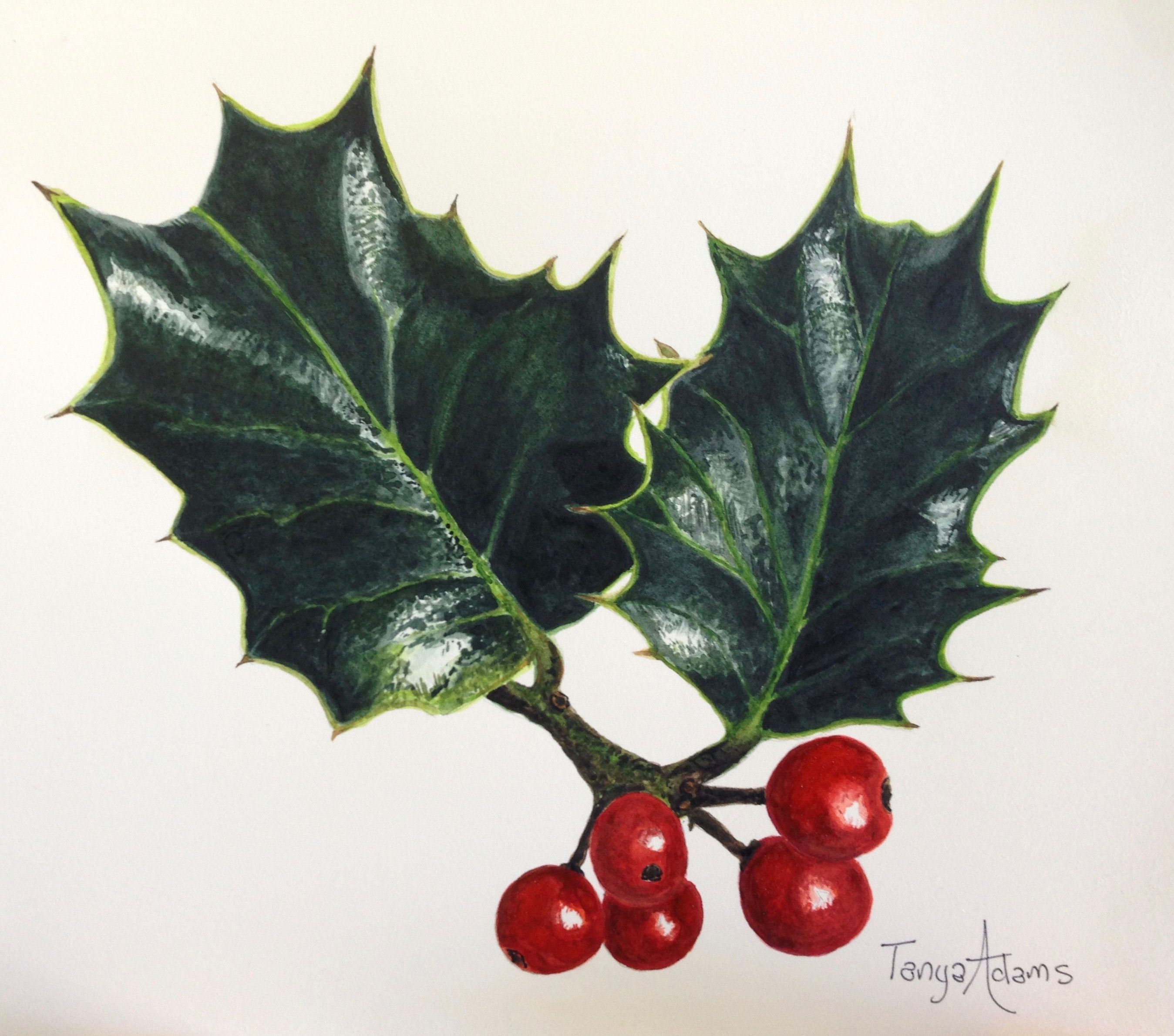 Holly And Berries Anna Mason Tutorial Anna Mason Botanical