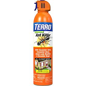 Outdoor Ant Killer Spray | Things to do | Ant killer spray