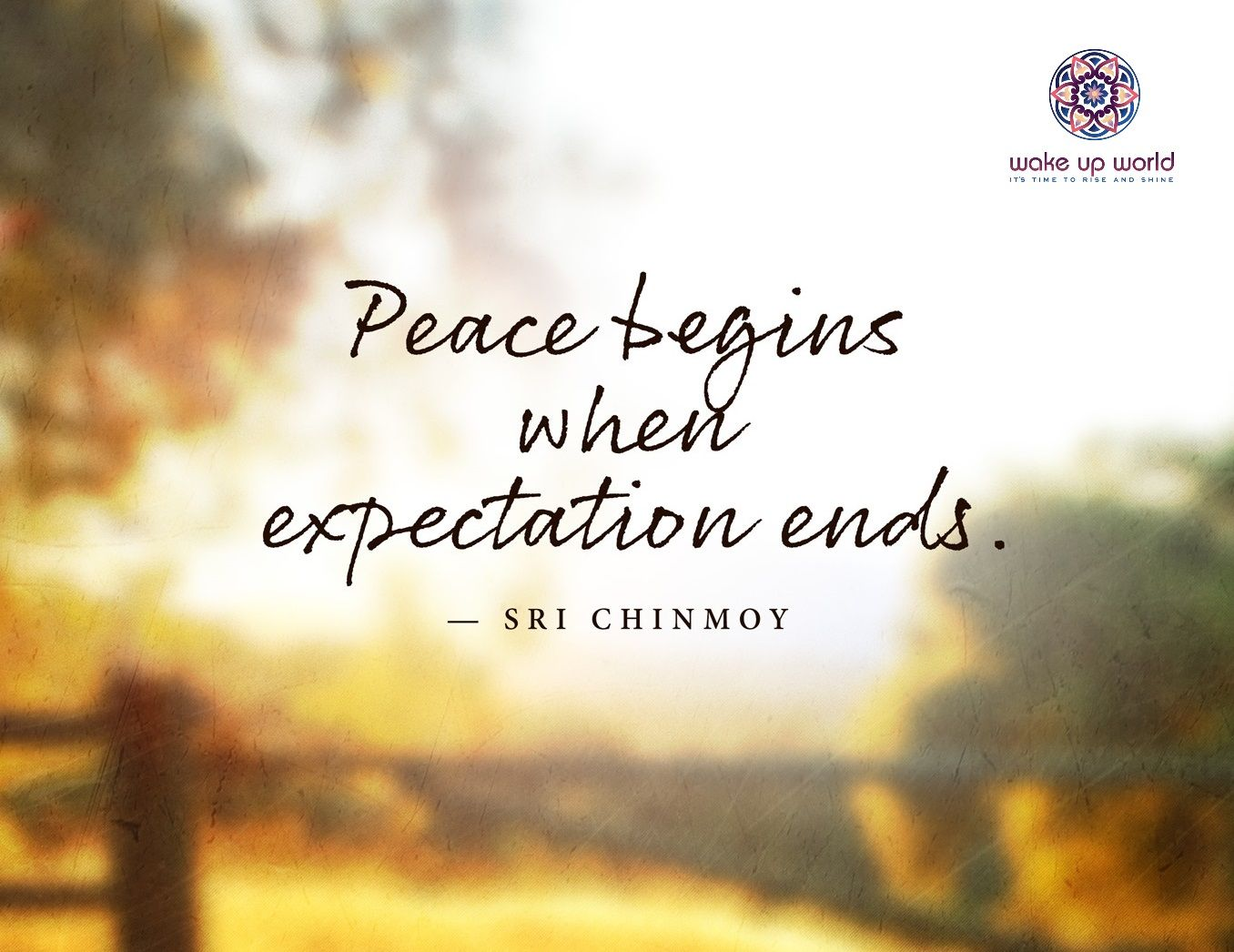 Great Spiritual Quotes About Life Ditching Physical Expectation In The Great 5D Shift  Esoteric