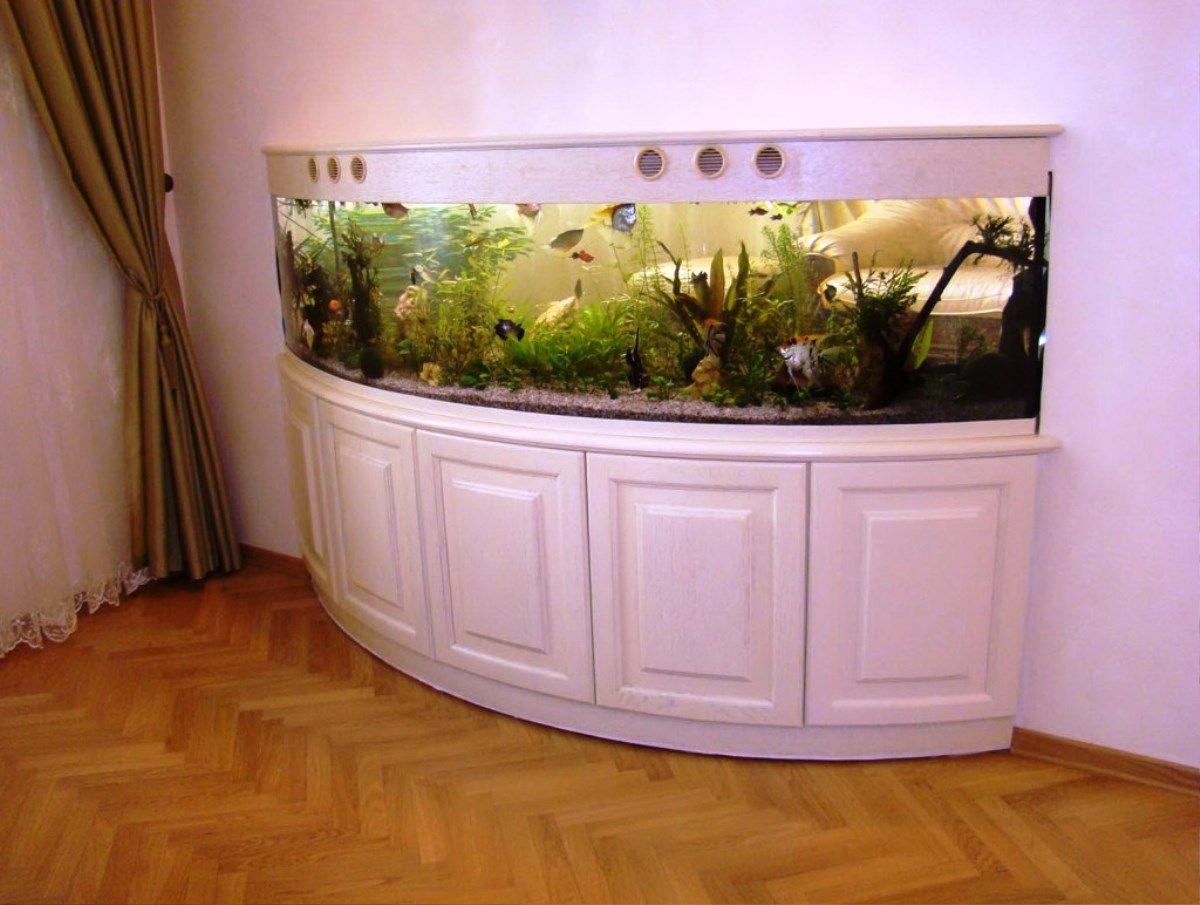 Aquarium design google search aquarium pinterest for Aquarium ideas