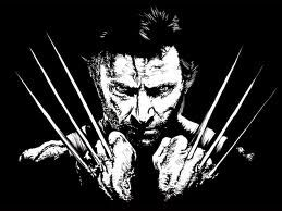 wolverine wallpaper hd black and white black and white wolverine wallpaper wolverine wallpaper hd black and white