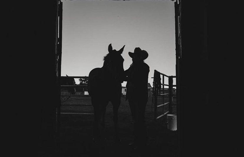 I love doing photoshoots with your pets! #veesphotos #edmonton #photographerslife #alberta #canadian #lifestylephotography #bloggingtips #branding #brandingtips #weddingphotographers #horses #horselover #horsephotography #petportrait #lifestylephotos #photographytips #photographytips #photographyposes #blackandwhitephotography #animallovers