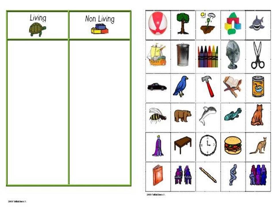 Worksheets Living And Nonliving Worksheets living things worksheets free and nonliving worksheet living