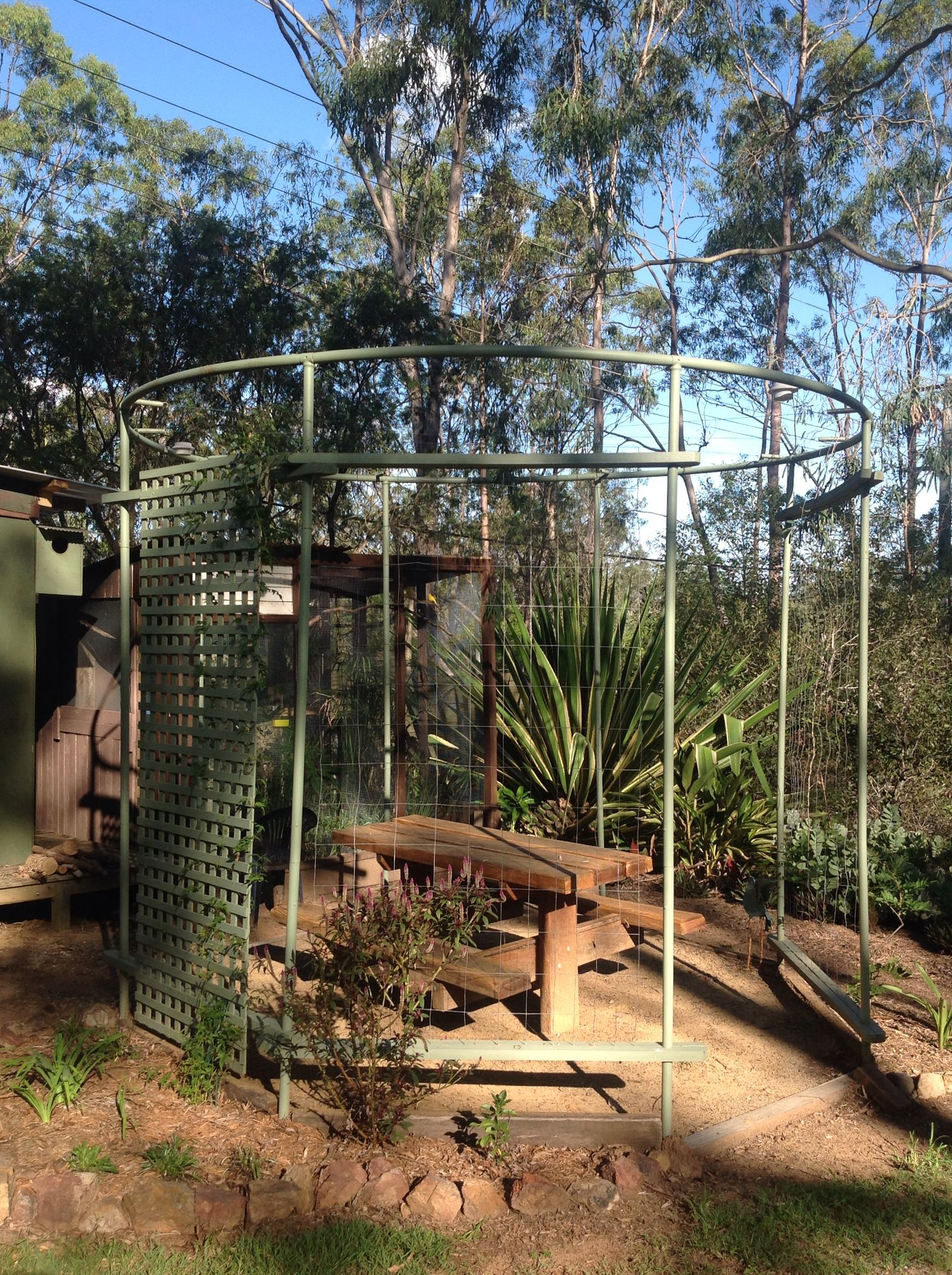 What became of our old trampoline frame, my hubby turned it into a ...
