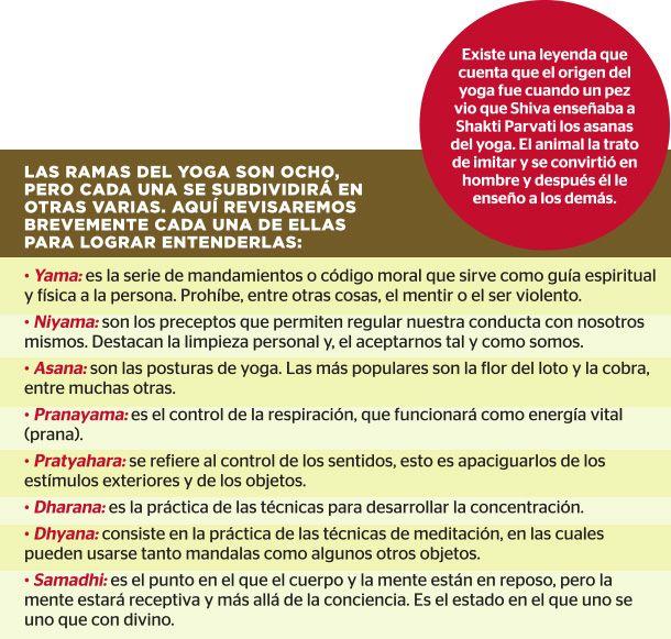 Las ramas que te elevan a lo divino | Revista CiudadYOGA