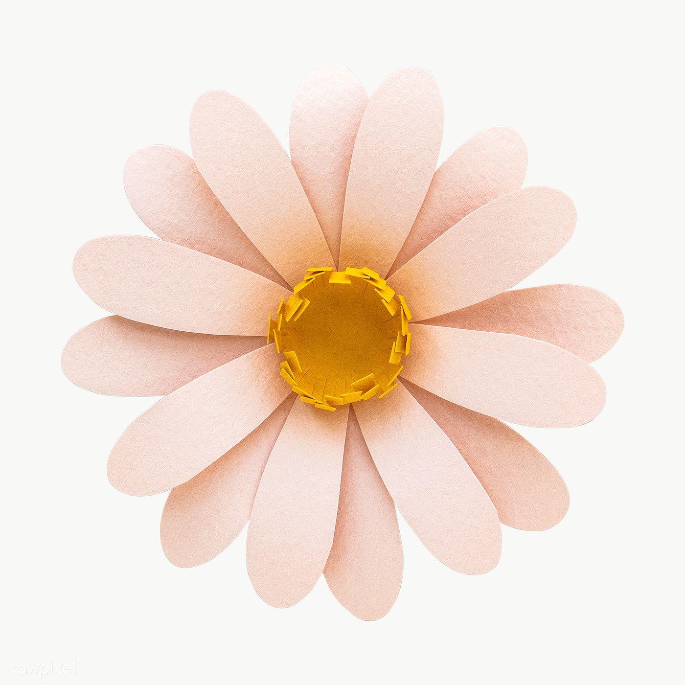 Gerbera Daisy Paper Craft Transparent Png Premium Image By Rawpixel Com Nam Gerbera Daisy Flower Frame White Anemone Flower