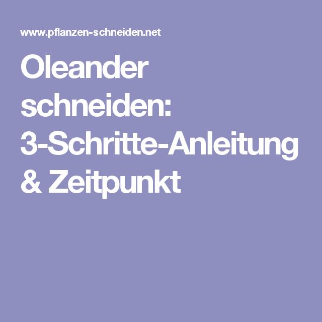 oleander schneiden 3 schritte anleitung zeitpunkt blument pfe im freien pinterest. Black Bedroom Furniture Sets. Home Design Ideas