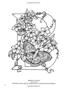 Dover Coloring Book Butterfly Alphabet Google Search Coloring Pages Butterfly Coloring Page Coloring Books