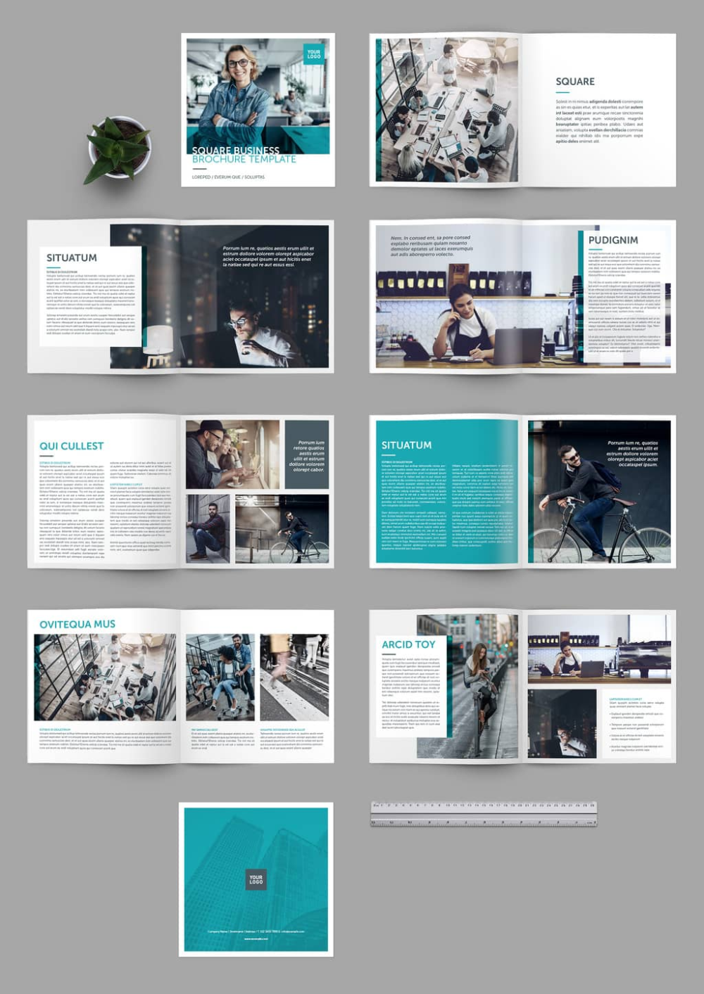 75 Fresh Indesign Templates And Where To Find More Brochure Design Layout Brochure Layout Indesign Layout