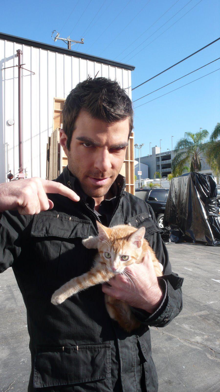 Sylar haz kitty