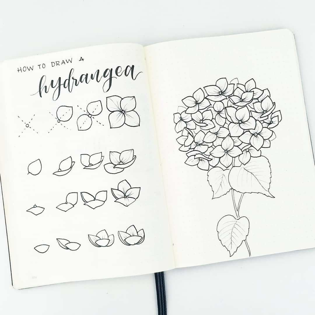 how to draw the perfect flower