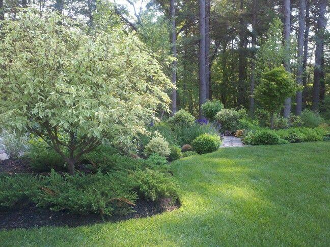 Everything You Need To Transform Your Yard Into A Backyard Paradise Backyard Garden Backyard Backyard Garden Design