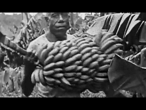 """Bananas: """"Nice-a Da Banan"""" 1919 Bray Studios; Banana Growing in Fiji: http://youtu.be/S-QkHFUrDvw #bananas #Fiji #Pacific"""