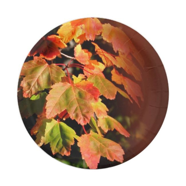 Rustic Fall Wedding Autumn Foliage Photo Leaves Paper Plate |  Rustic Fall Wedding Autumn Foliage Photo Leaves Paper Plate