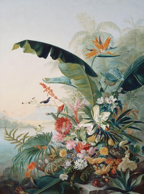 fleurs exotiques papier peint papier peint pinterest fleurs exotiques exotique et. Black Bedroom Furniture Sets. Home Design Ideas