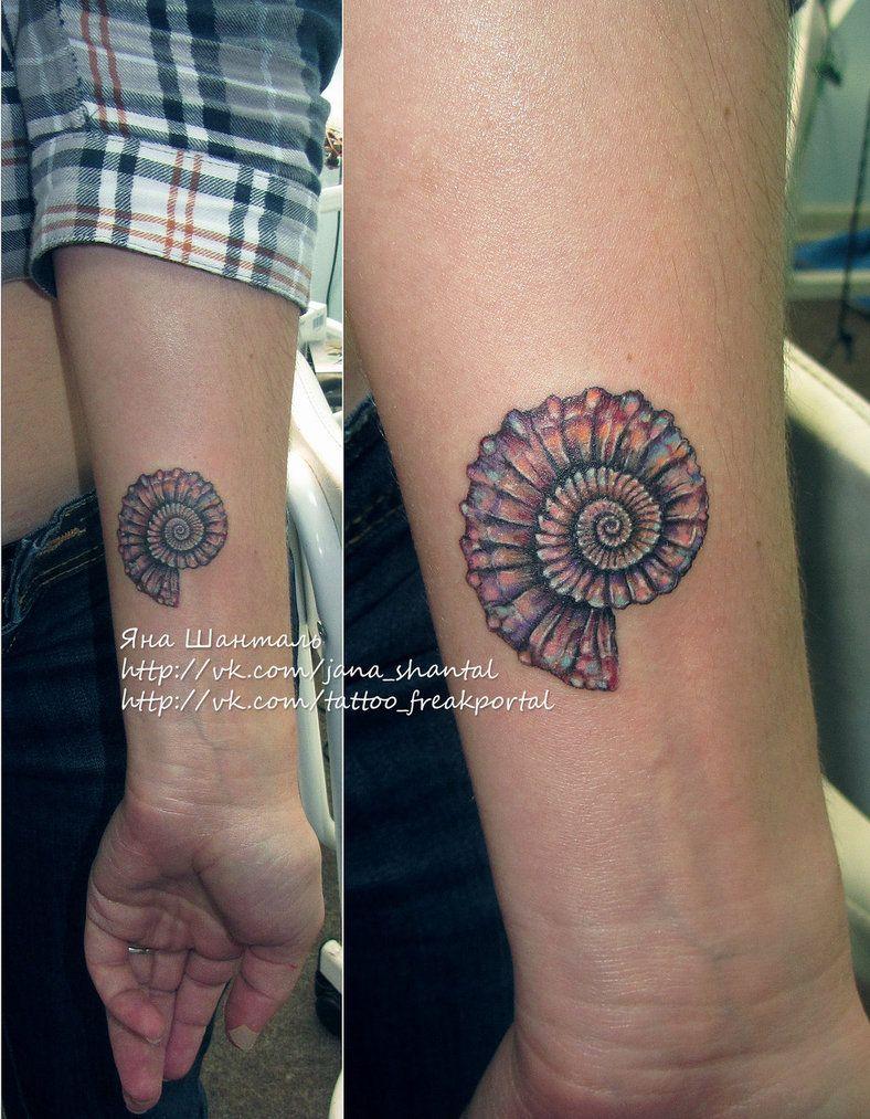 Ammonite Tattoo : ammonite, tattoo, Ammonite, Tattoo, Google, Search, Shell, Tattoos,, Seashell, Spiral, Tattoos