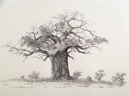 baobab tree tattoo google search blank canvas pinterest rh pinterest ie baobab tree tattoo drawing boab tree tattoo