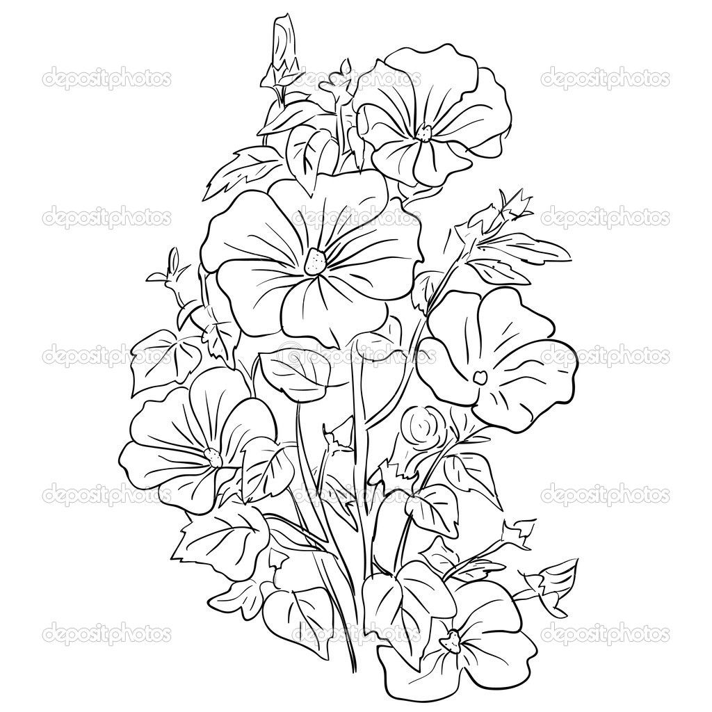 Flower Bouquet Coloring Pages An Elegant Bouquet Of Beautiful