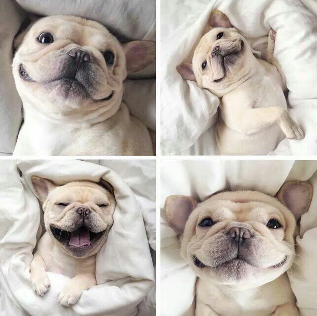 Owww! Ce sourire!!