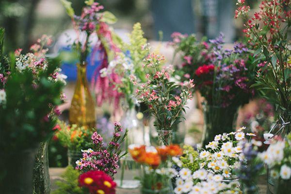 Wild flowers, photo by Jenny Markham