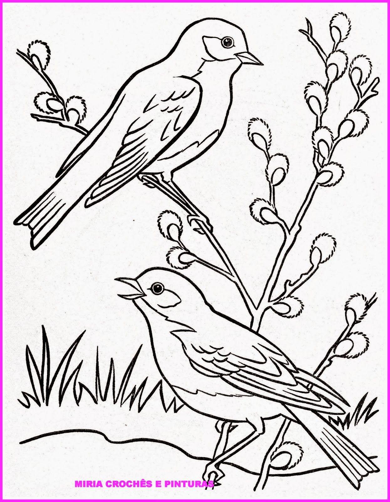 Para quem gosta de pintar pássaros, eis aqui algumas sugestões ...
