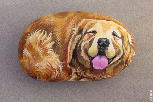 Hand Painted Rock Golden Retriever Maľovanie A Napady