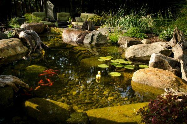 Wasser Garten Ideen Cool Stein Teich Fisch