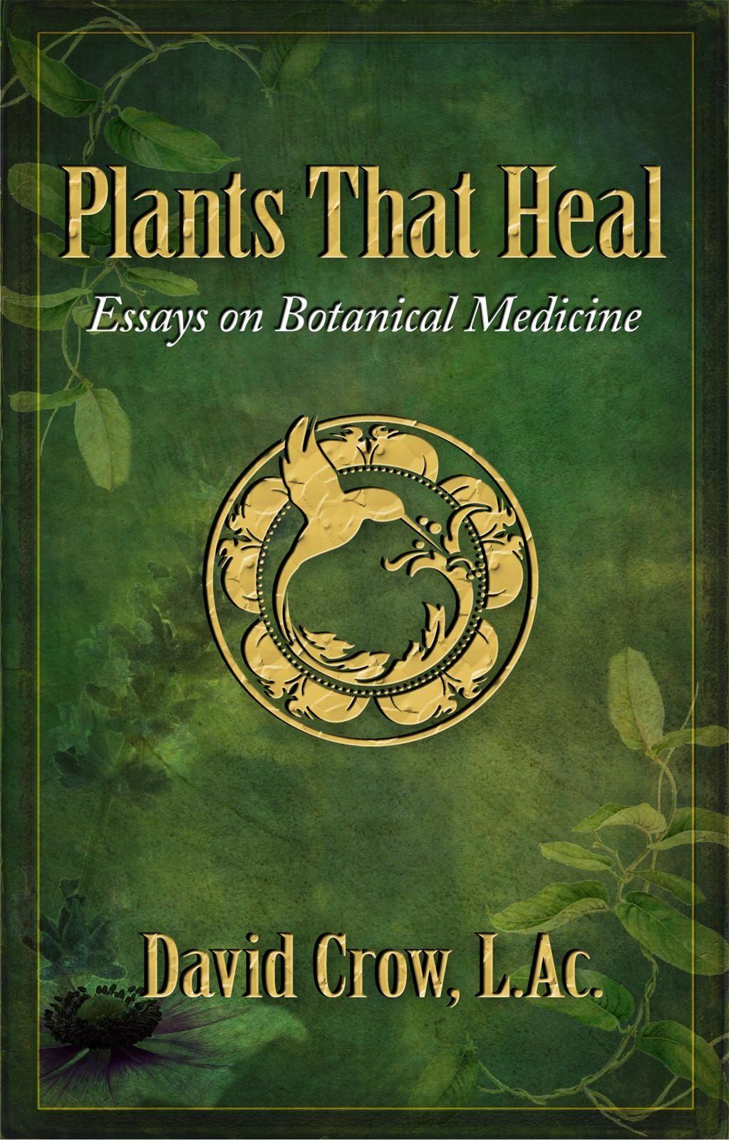 spiritual health essay   research paper sample   writing