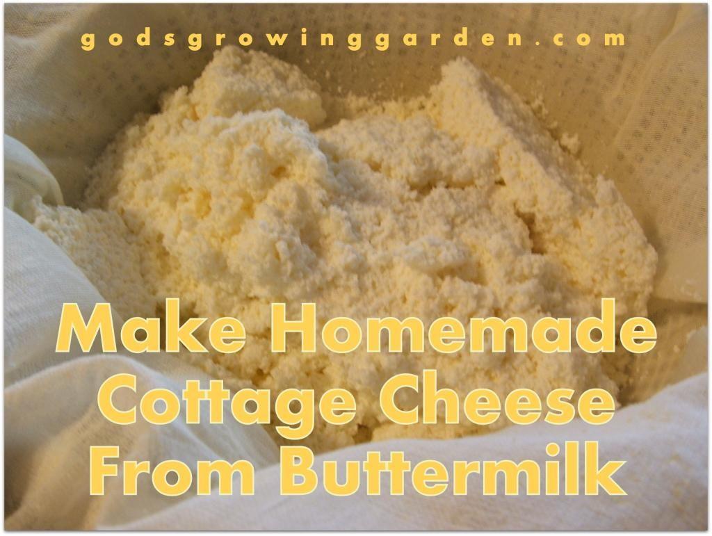 Godu0027s Growing Garden: Make Homemade Cottage Cheese From Buttermilk
