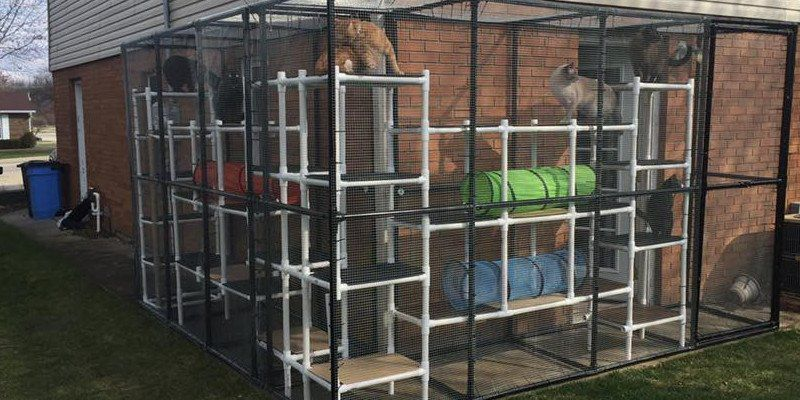 "Outdoor PVC ""Catio"" for Cat Play & Protection"