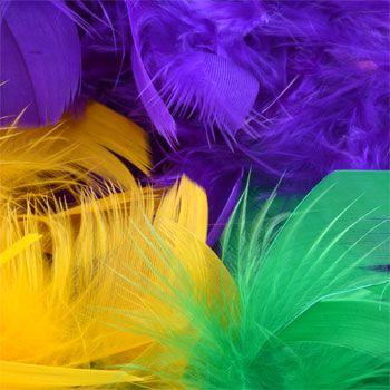 "Bulk Mardi Gras Feather Boas, 48"" at DollarTree.com"