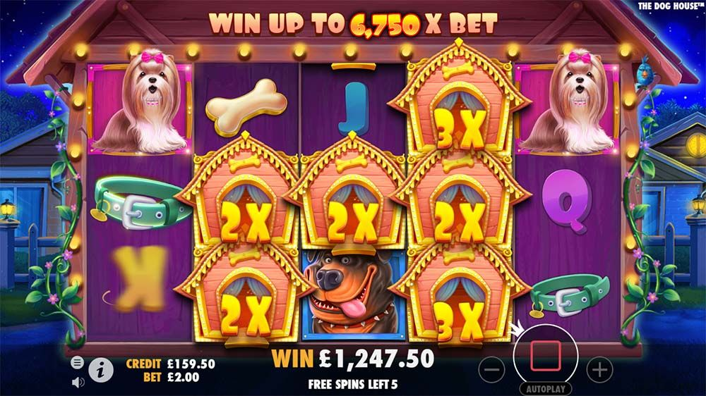 Review and Where to Play The Dog House Slot From Pragmatic