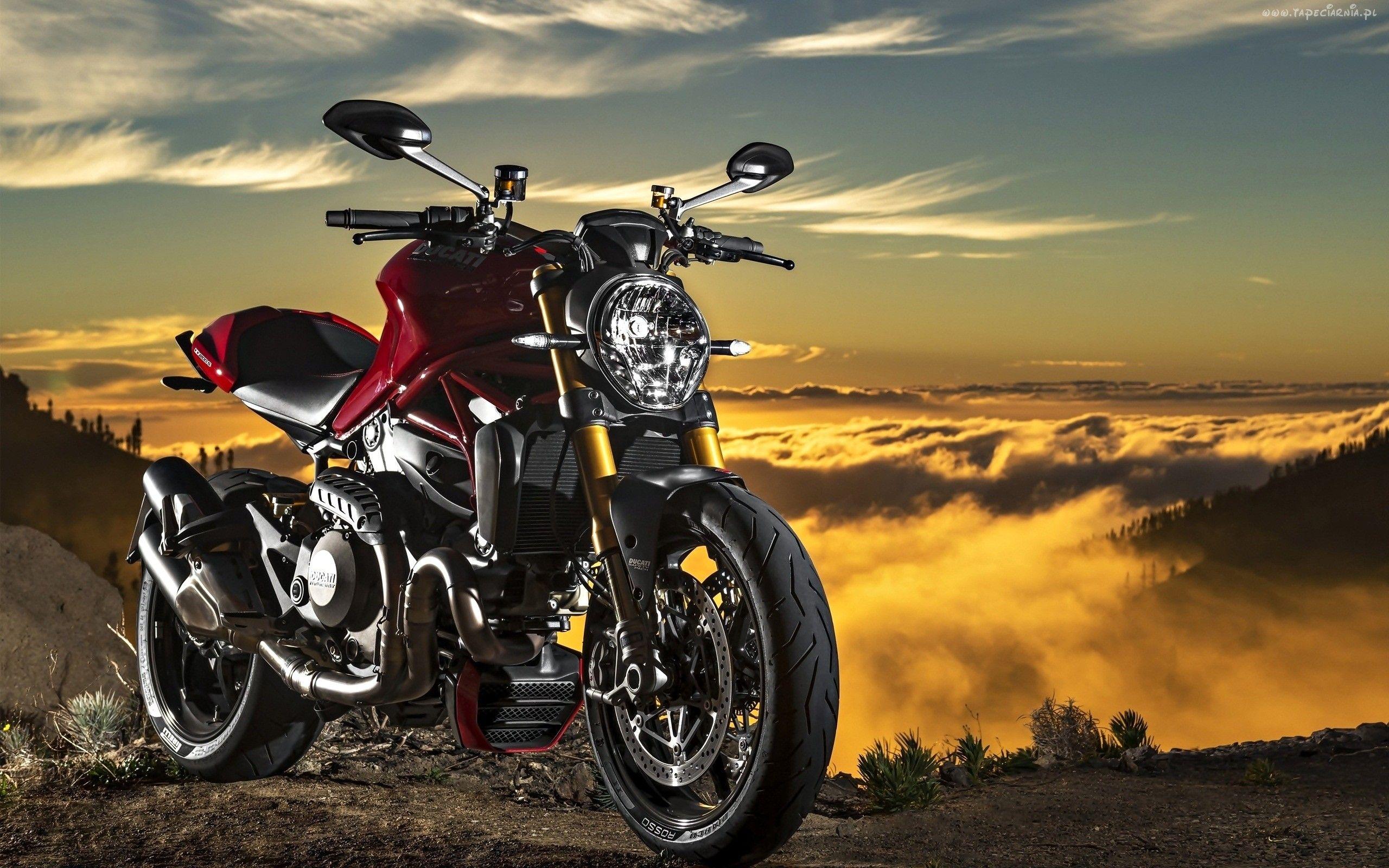 Tdm 900 | Yamaha, Bike trips, Motorcycle