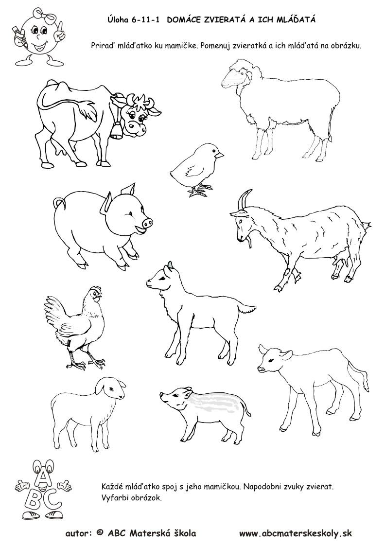 6 11 1 Uloha Prirad Mladatko Ku Mamicke Pracovny List Licencia Animal Projects Zoo Animals Farm Animals